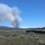 Motor home causes vegetation fire