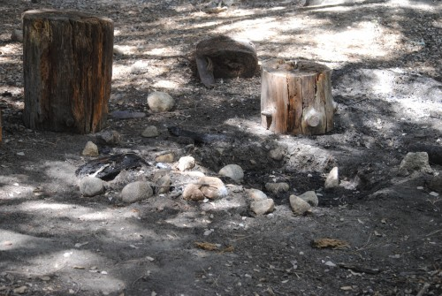 The Aug. 20 issue of the Town Crier carried a story about an illegal party and bonfire near Alvin Meadows. This is the fire pit. Candles were found on the ground among the leaves, too. Photo by JP Crumrine