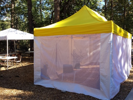 The tent used for the Idyllwild Nature Center's annual Butterfly Daze each August is missing since a break-in last week. Photo by Amanda Allen