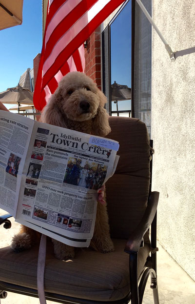Idyllwild resident Cayenne Pepper Castleberry-Daigh enjoys a leisurely Veterans Day afternoon in San Clemente catching up on the Town Crier. Photo courtesy Sandii Castleberry