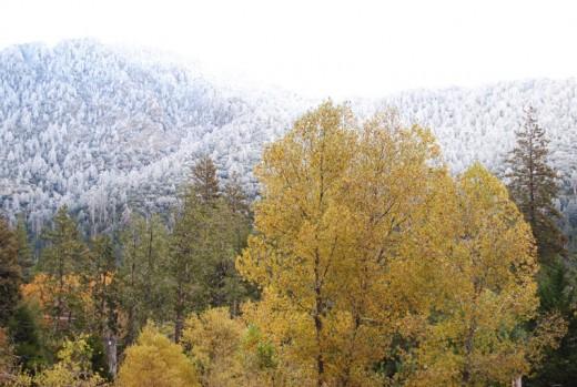 A light snow fell high on the San Jacinto Mountains Sunday night.Photo by JP Crumrine