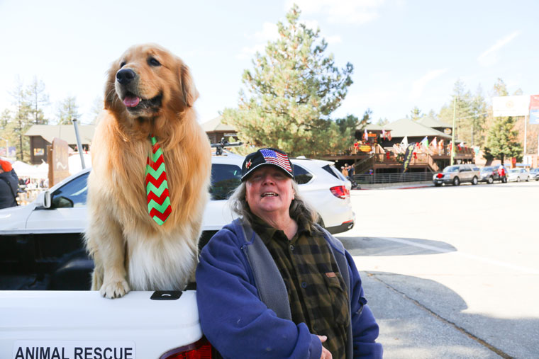 Idyllwild's honorary Mayor Max, accompanied by Chief of Staff Phyllis Mueller, anticipates the crowds of fellow canines and children and some adults for the annual Christmas Tree Lighting Ceremony last Saturday.