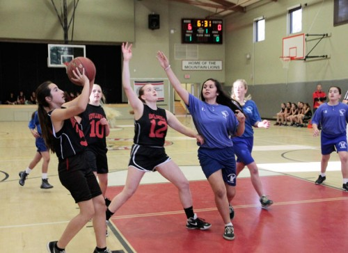 Payton Priefer scores for the Idyllwild Middle School girls basketball team, who defeated the St. Hyacinth Academy Eagles, 34-17, on Monday. Other Idyllwild players are Nicole Cochrane (no.10) and Miren Pino (no. 12). The Idyllwild boys team also won, beating the St. Hyacinth Boys, 39-24. Photo by John Drake