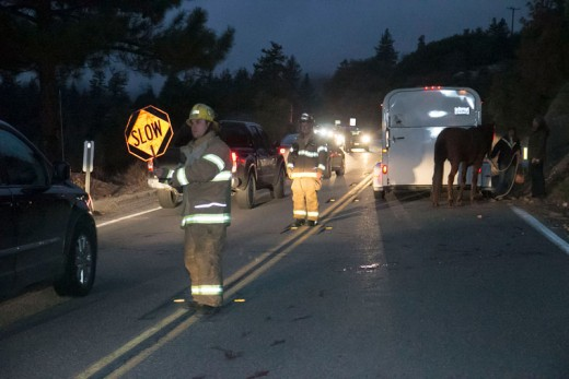 At about 5:15 p.m. Saturday, Idyllwild Fire responded to an incident on Highway 243 between Marian View and Saunders Meadow. According to witnesses, a truck pulling a horse trailer was traveling north on Highway 243 when the door of the trailer opened. The horse fell out of the trailer and onto the highway. The horse broke both rear legs and was euthanized because of the injury. Photo by Jenny Kirchner