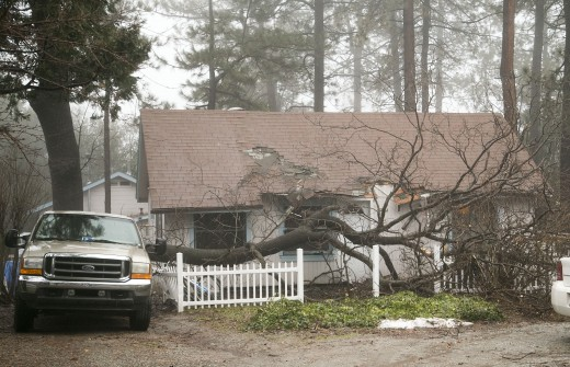 Sunday afternoon on Dome Lane, a large oak branch fell on a house and also smashed the back of a truck. High winds and wet conditions were blamed. No injuries were reported.Photo by Jenny Kirchner