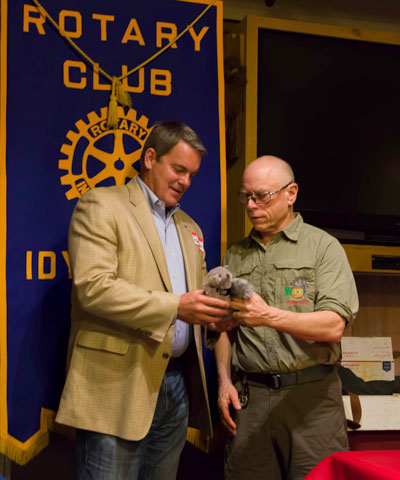 Randon Lane (right) receives the coveted Idyllwild Rotary Squirrel from Idyllwild Rotary President Chuck Weisbart at the May 11 weekly meeting of the club. Lane, the mayor of Murrieta, spoke at the meeting about the governor's proposed budget and other issues of importance to local citizens. He then answered questions from the audience, some of which touched on his candidacy for Riverside County supervisor. Photo by Tom Kluzak