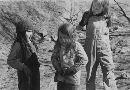 An ant in your hair, especially when you hate them, can mar an otherwise nice day. These students from Hamilton School helped replant the Soboba Burn with Coulter pine seedlings in March 1975.File photo