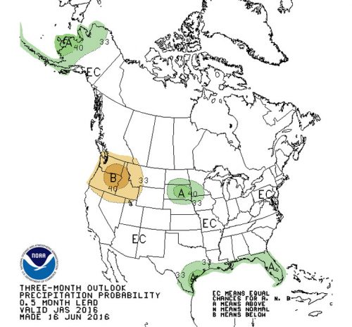 The National Weather Service's precipitation forecast for the next three months — July through September.  Photo courtesy the National Weather Service