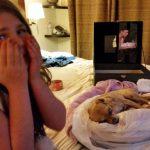 Mountain lion kills family pet