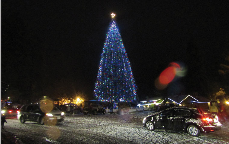 The Idyllwild Christmas Tree shines brightly after the tree lighting ceremony Saturday evening on Jo'An's Restaurant & Bar premises. Each year, the Idyllwild Soroptomists organize and sponsor the lighting.  Photo by Amy Righetti
