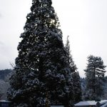 An almost white Christmas in Idyllwild: A time to come together in peace