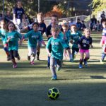 Sports: Youth & adult soccer