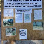 Forest Service burning on Thomas Mountain