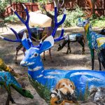 New deer join Idyllwild Deer Herd