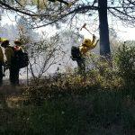 'Fulmor' brush fire near Bay Tree Springs