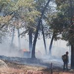 Small wildfire, Indian Fire, near Pine Cove