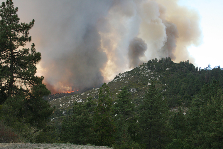 Shasta County wildfire kills 1, burns firefighters