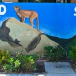 Idyllwild School test performances better than state or district