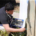 Ben Cruz painting mural in front of Idyllwild School