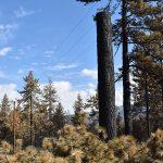 Cranston Fire damages 132 SCE poles