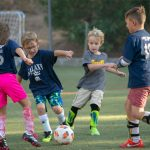 Sports Roundup: Soccer