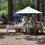 Art in the Park benefits the community