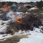 Pile burning at  Vista Grande station