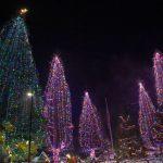 Idyllwild's annual Tree Lighting Ceremony – 2019