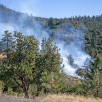 Forest Service to continue pile burning