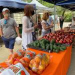 Our popular Farmers Market