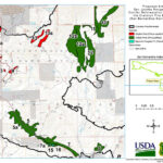 Public comments sought for  Cranston Fire reforestation project