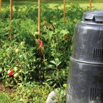 County waste department to provide free virtual composting and vermicomposting classes Saturday