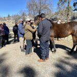 Veterans attending War Horse Creek soon to have housing