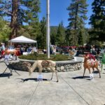 Sixteen deer and one coyote take center stage in IdyPark