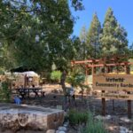 Peter Kindfield continues forest garden class series at the Idyllwild Community Garden