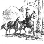 horsesrider copy