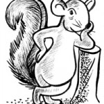 squirrelsassy